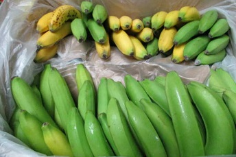 fruit and vegetables cargo